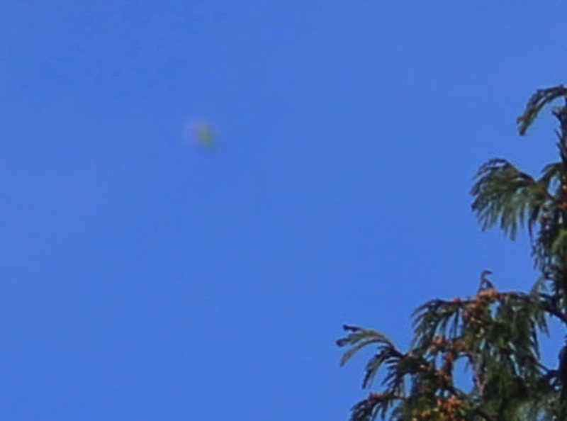 http://www.ufobc.ca/Sightings/martinUfo2.jpg